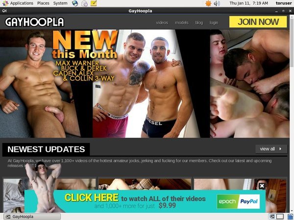 Gay Hoopla Discount Page